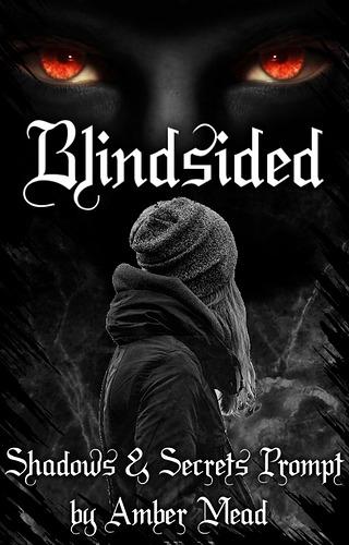 Blindsided Book Cover