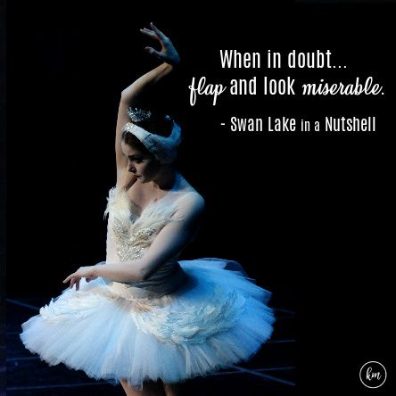 Swan Lake in a Nutshell